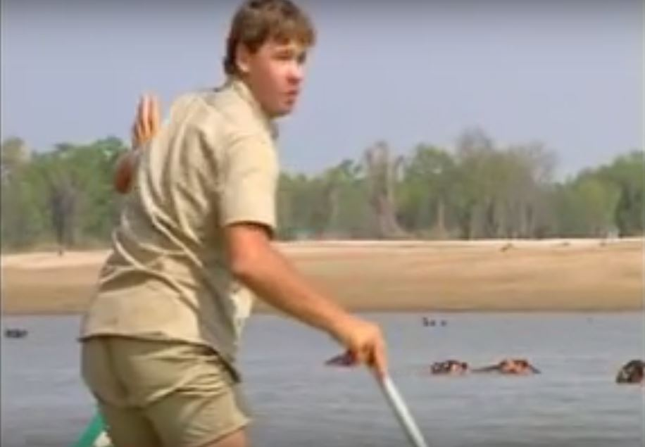 Steve Irwin Reveals One Animal He Refused To Wrangle In Rare Footage Steve Irwin hippo shook