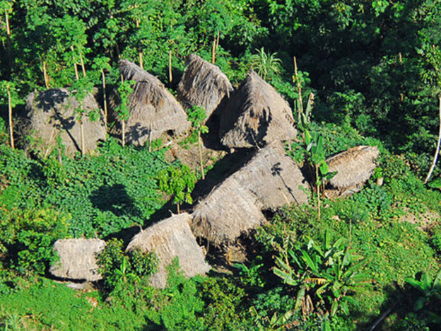 Uncontacted Brazilian Tribe Members Massacred By Gold Miners tribe village 1 624x468