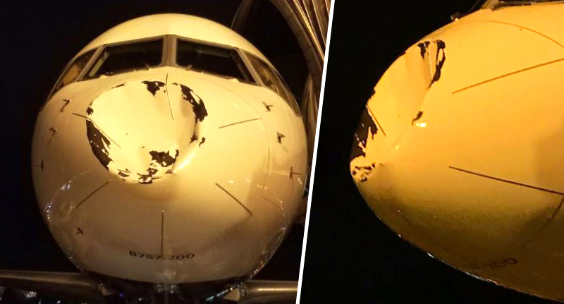 Freak Accident At 30,000ft Sees Plane Land With Severely Dented Nose plane nose fb