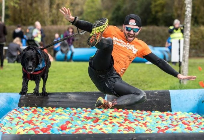 Muddy Obstacle Course For Dogs And Their Owners Coming To UK Ball Pool Dog 679x468
