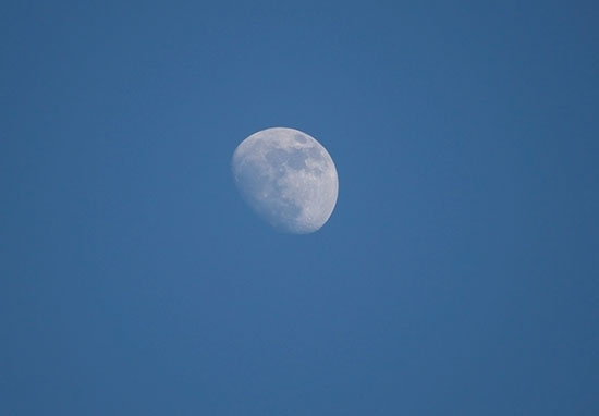 Theres Going To Be A Giant Beaver Moon In The Sky Tonight Day moon