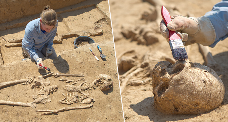 300,000 Year Old Skull Discovery Could Rewrite Human History bra 6 1