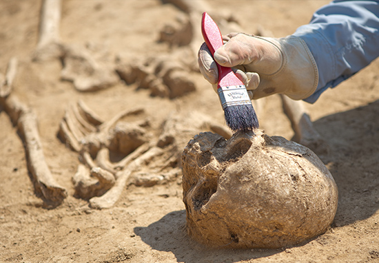 300,000 Year Old Skull Discovery Could Rewrite Human History connor 4 2