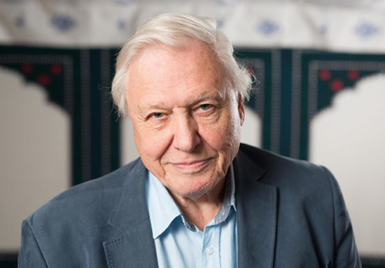 david attenborough smiling