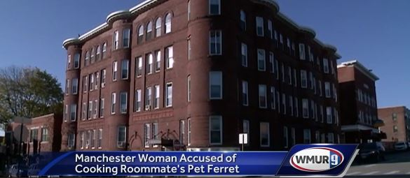 Woman Accused Of Disgusting Act With Ferret ferret news