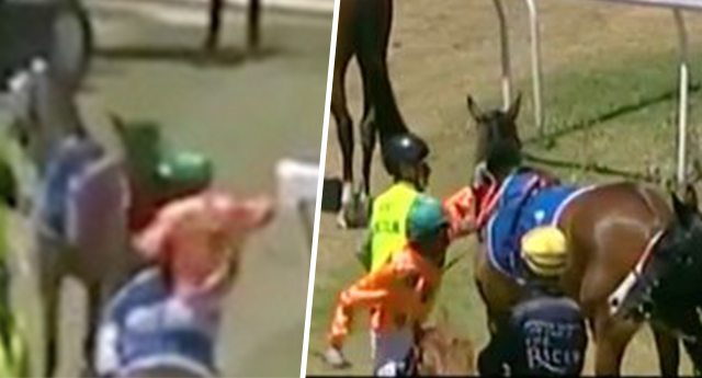 Jockey Violently Attacks Horse Because It Nearly Made Him Fall Off horseFacebookThumbnail