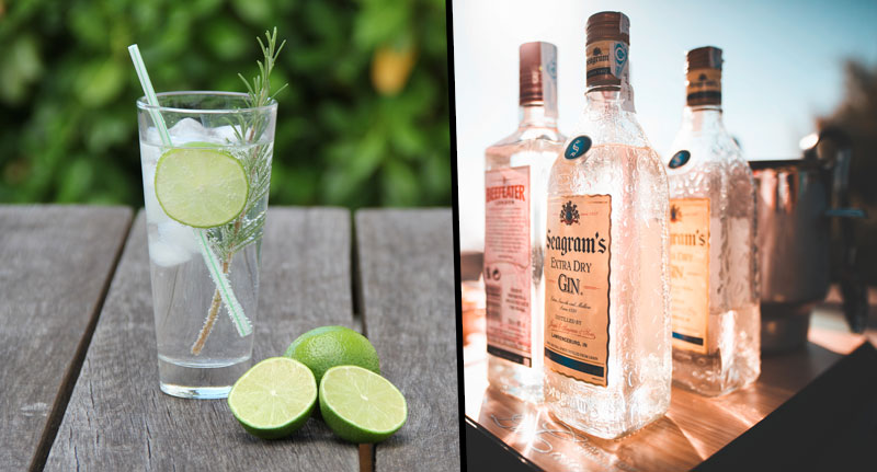 Alcohol Company is Looking To Hire A Gin Ambassador