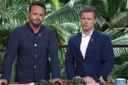 ant and dec web 1