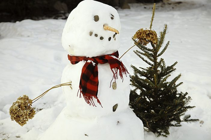 Plummeting Temperatures Could Send World Into Mini Ice Age snowman 1139261 1920 702x468