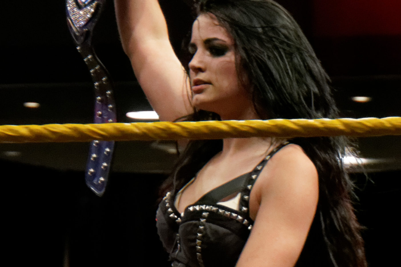 WWE Star Paige Will Never Wrestle Again After Horrific Neck Injury 2014 04 03 21 16 33 NEX 6 6441 DxO 13923810015 1404x936