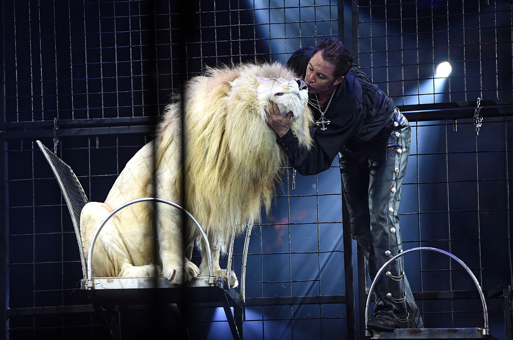 Wild Animals Banned From Circuses In Britain GettyImages 508051834