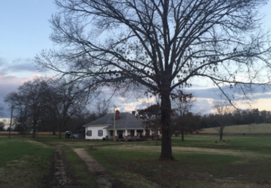 Family Buys House Where Their Ancestors Used To Pick Cotton House Cotton A