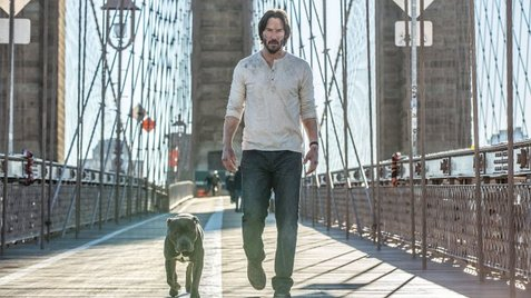John Wick 3 Plot Details Have Been Released MV5BNzUyNTA4MDk0OF5BMl5BanBnXkFtZTgwMjA0NDA5MDI@. V1 CR059640360 AL UX477 CR00477268 AL