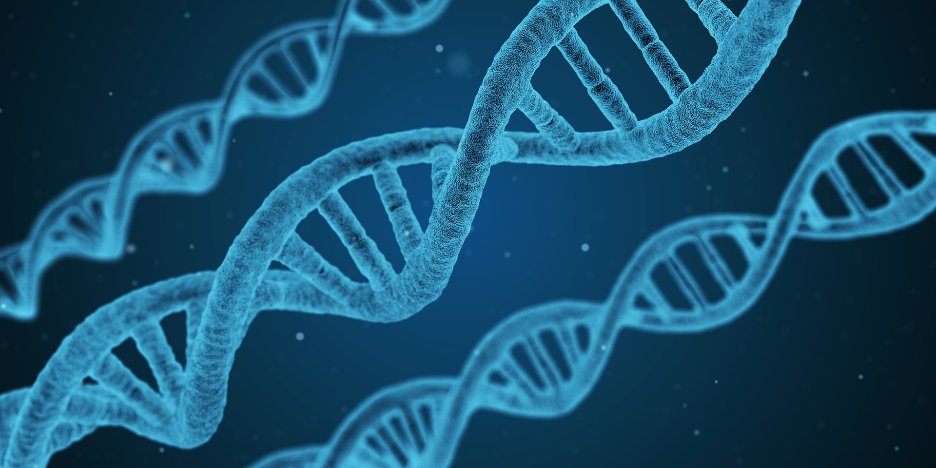 Researchers Say Theyve Found A Way To Stop Humans Ageing dna 1811955 1920