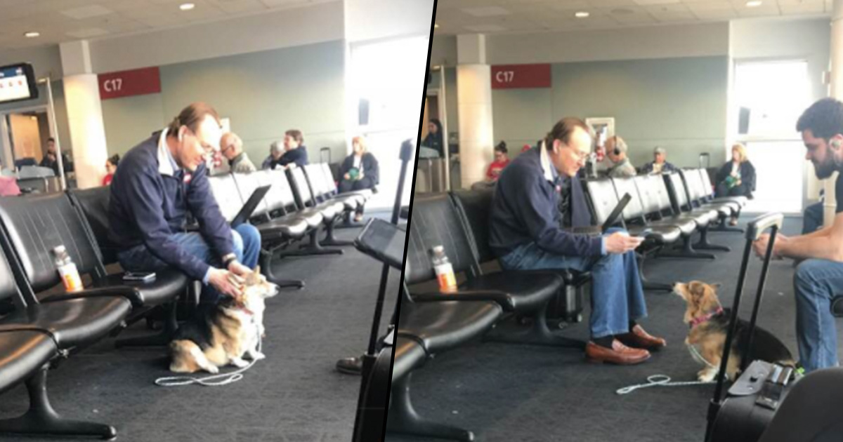 Dog Spots Upset Man At Airport And Goes Over To Comfort Him