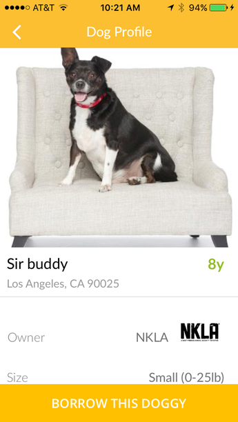 Tinder For Dog Borrowing Launches To Cure Your Loneliness unnamed 1 1