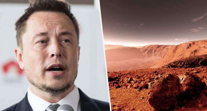 Elon Musk Says We Must Colonise Mars To Preserve Our Species In World War Three