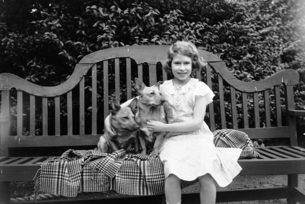 black and white photo of a young queen elizabeth with her corgis