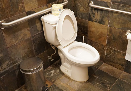 Future Homes Will Be Able To Check Your Poo For Poor Health toilet1231