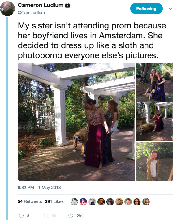 Girl Dresses As A Sloth And Photobombs Everyones Prom Photos Sloth1