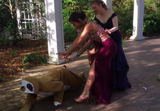 Girl Dresses As A Sloth And Photobombs Everyones Prom Photos Sloth web