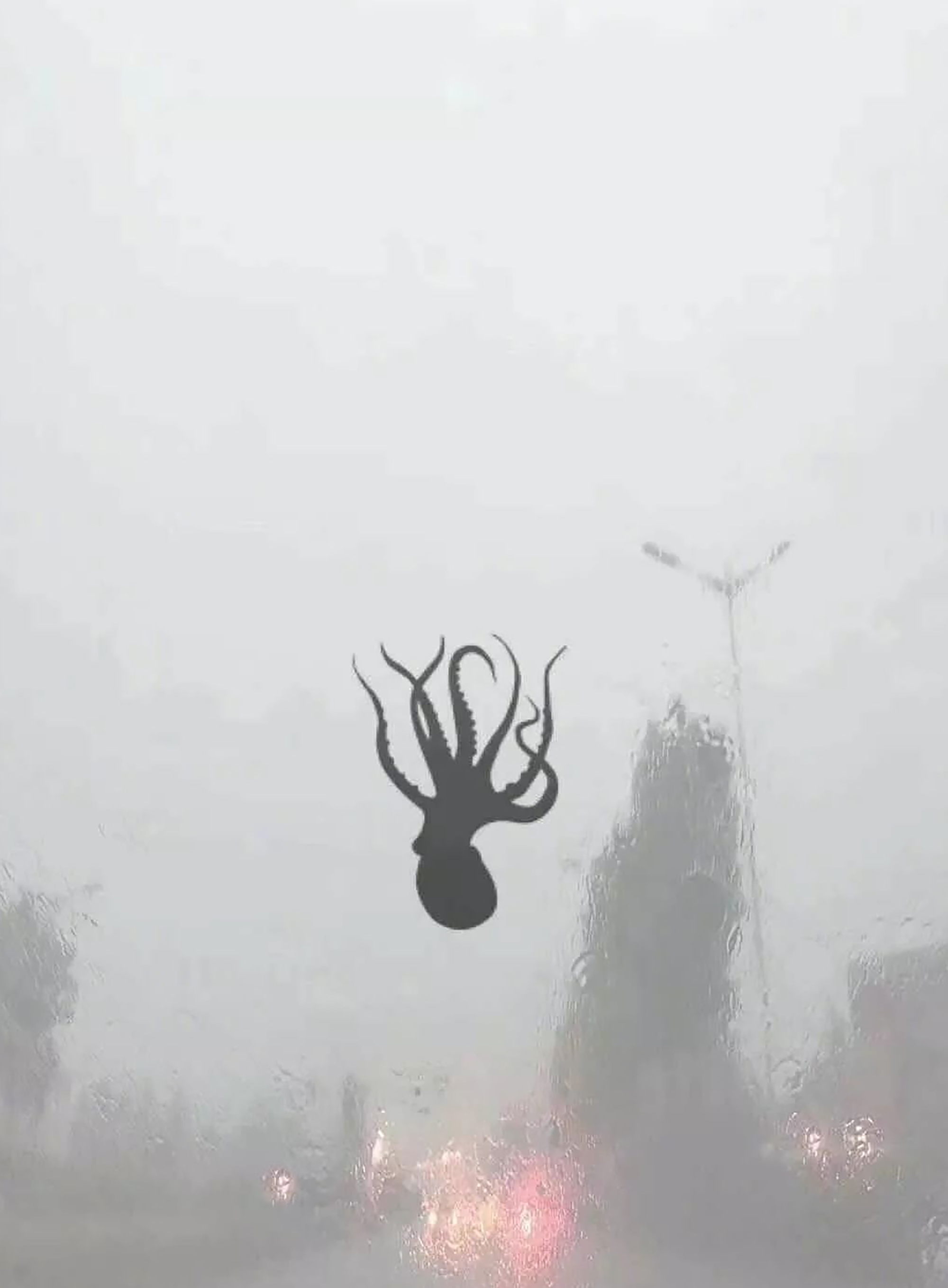 octopus on windscreen