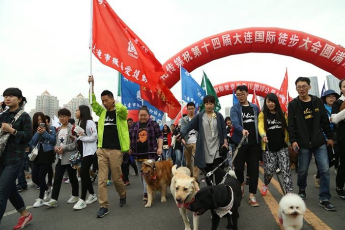 Dalian Dog Meat Protest