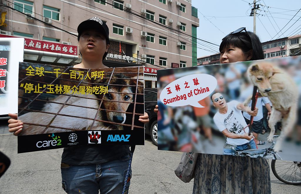 Animal activists display protest banners outside the Yulin government office in Beijing on June 10, 2016 prior to dog meat ban.