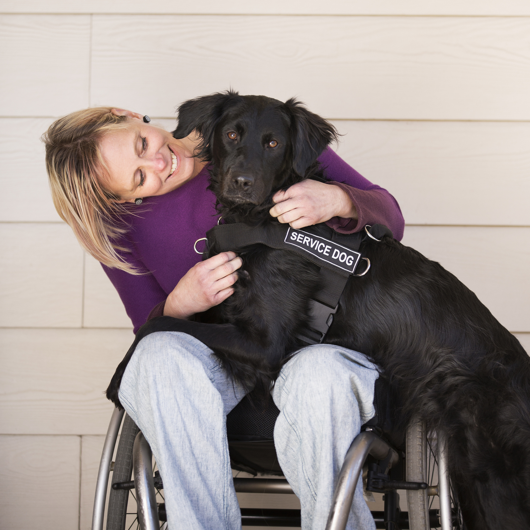Wheelchair user with service dog