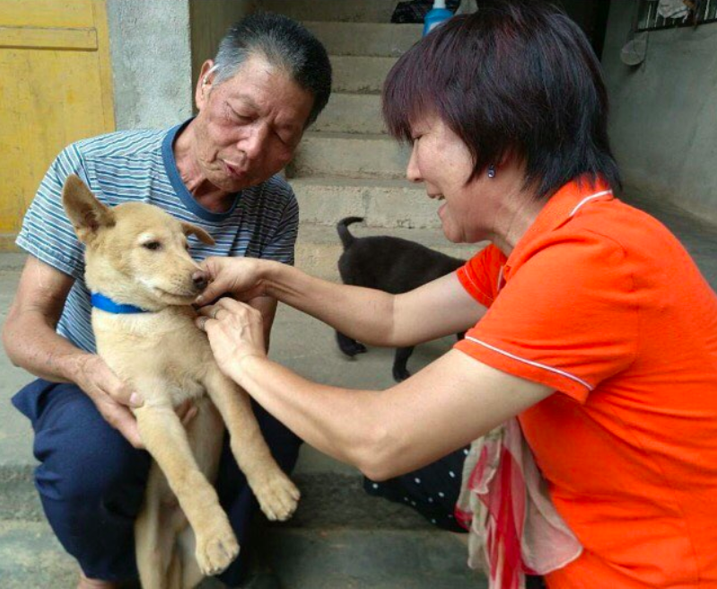 Duo Duo Project caring for a rescue dog