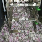 Mice Chew Through £13,000 In Bank Notes In Cash Machine