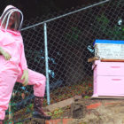 Girl Doesn't Have The Best Start To Beekeeping