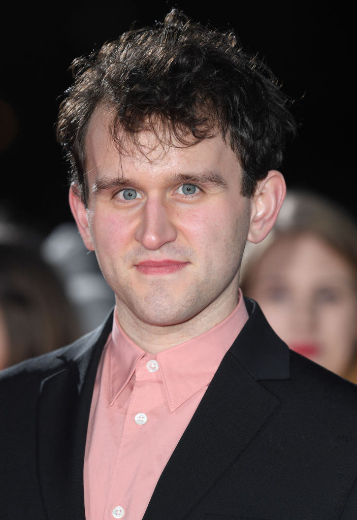 Dudley Dursley actor Harry Melling