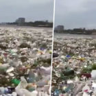 Sickening Footage Shows Sea Completely Full Of Rubbish