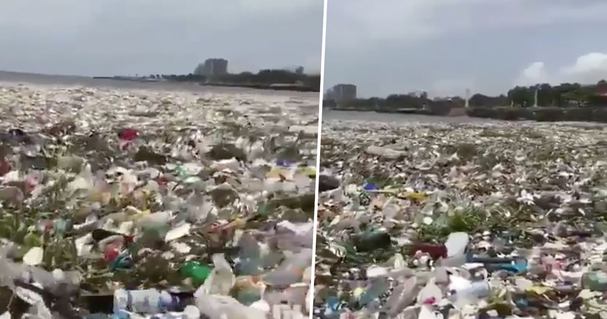 Plastic waste from coastline off the Dominican Republic