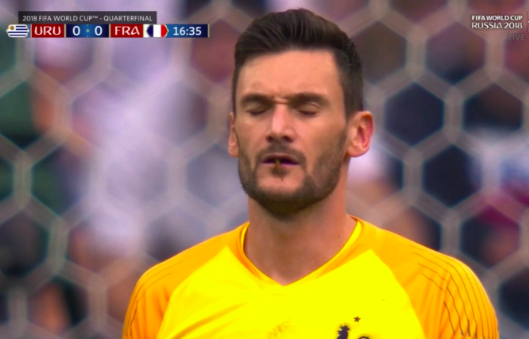 Hugo Lloris almost eats dragonfly