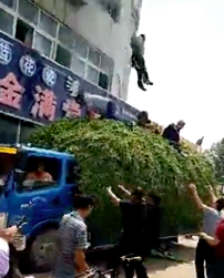 Lorry Carrying Pea Sprouts Saves People From Restaurant Fire Screen Shot 2018 07 09 at 21.23.45