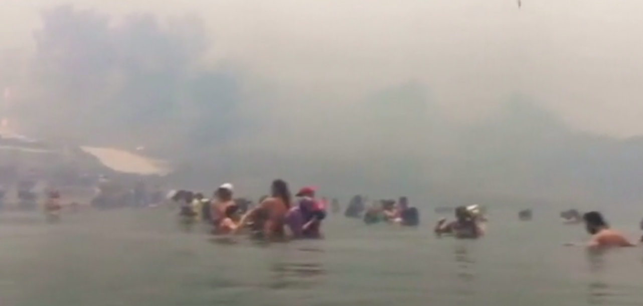 Greek residents take refuge in the sea to avoid wildfires.