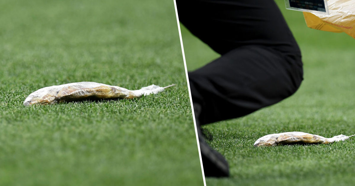 Dead Fish Thrown On Pitch During England's Semi-Final Against Croatia