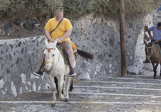 tourist on a donkey