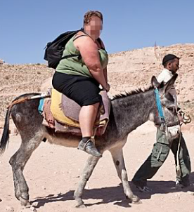 tourist on donkey