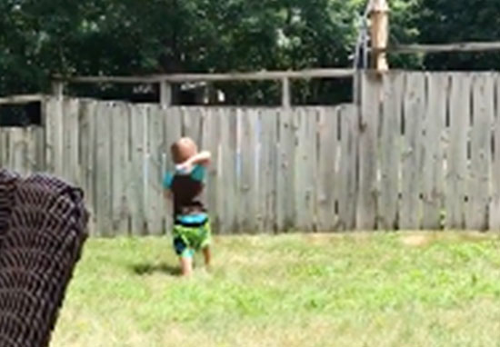 Best Friends Toddler And Dog Play Fetch Over Fence toddler1