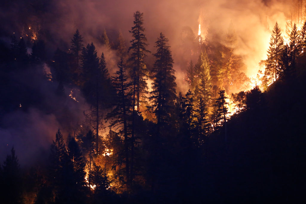 Forest burns in the Carr Fire on July 30, 2018 west of Redding, California. Six people have died in the massive fire, which has burned over 100,000 acres and forced thousands to evacuate