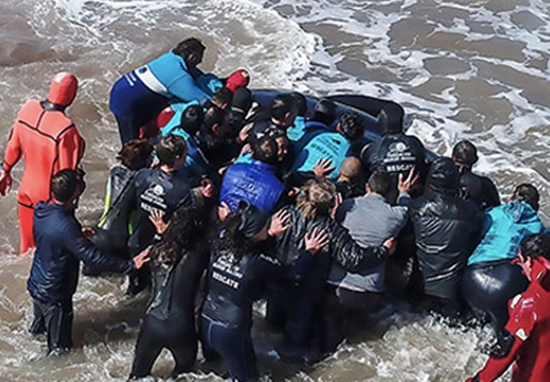 Orca is rescued by heroic humans.