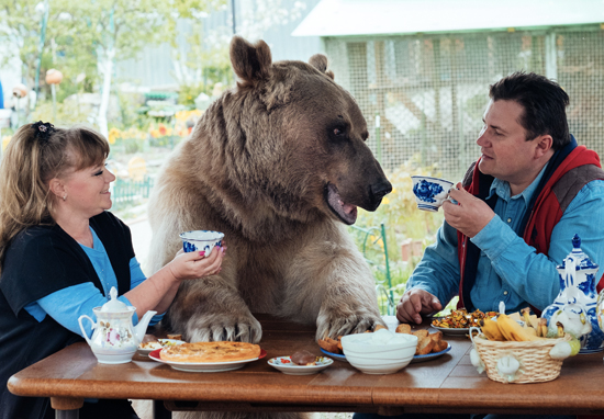 Russia Family enjoy tea with their adopted bear