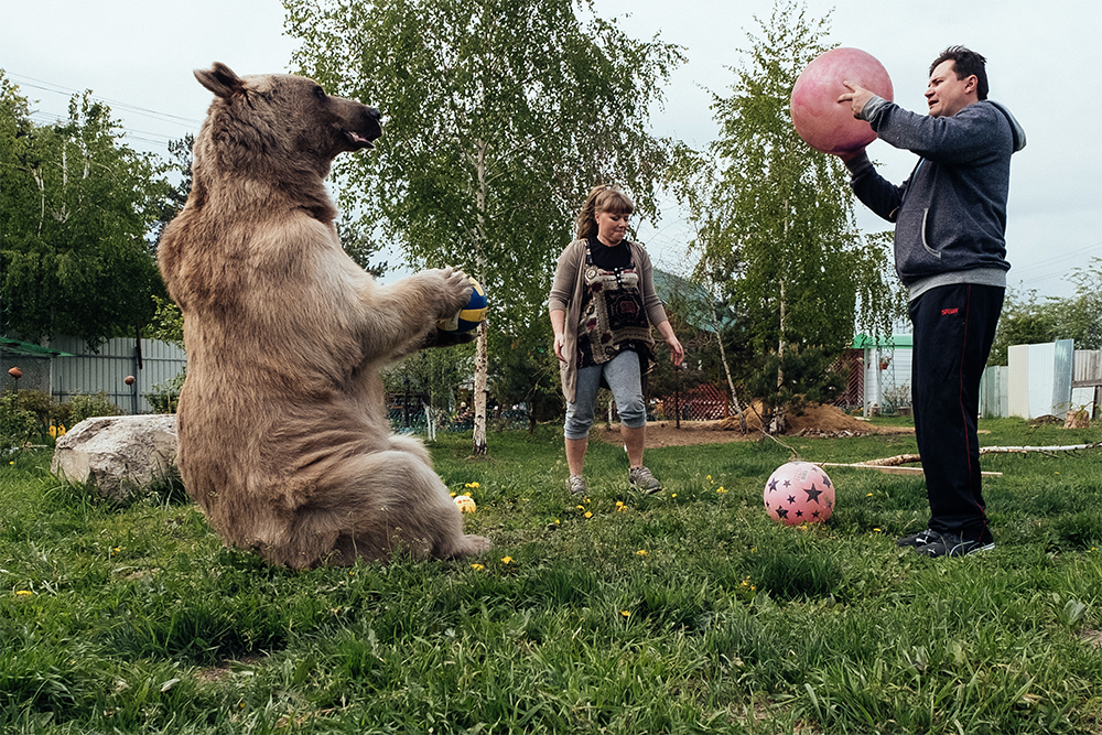 Russian family play with adopted bear