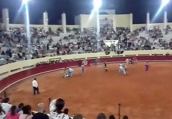 Bullfighting activists attacked