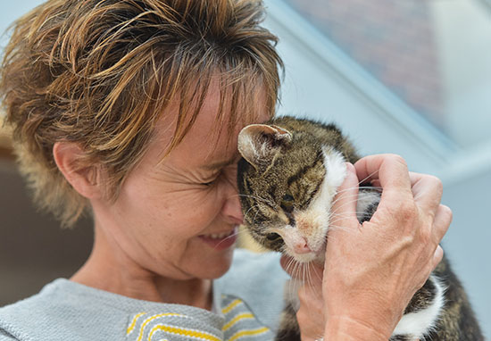17 Year Old Cat Finds Way Home After 13 Years Missing cat