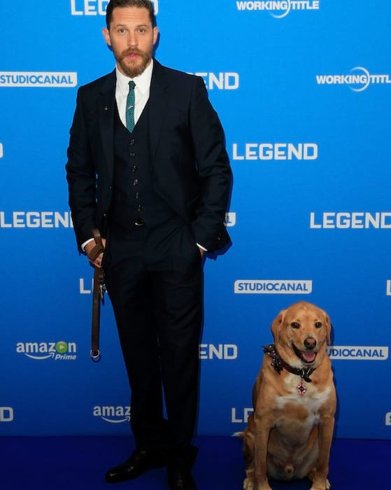 tom hardy woody legend