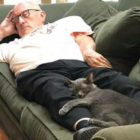 Volunteer Who Goes To Pet Sanctuary Every Day Keeps Falling Asleep With Cats